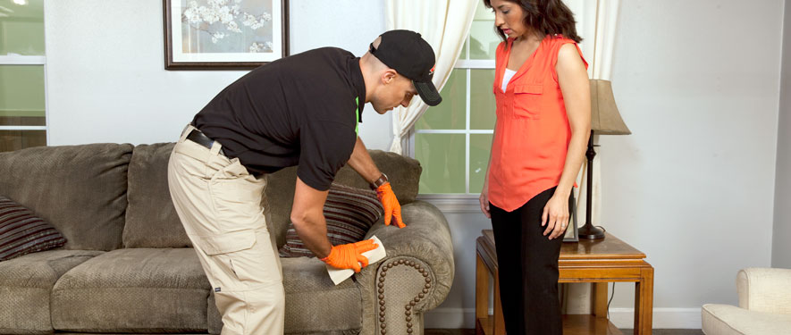 Faribault, MN carpet upholstery cleaning