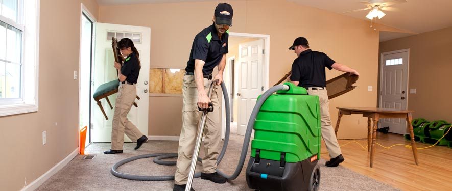 Faribault, MN cleaning services